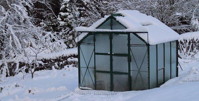 greenhouse-jul15-img03